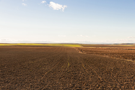 recently: Landscape with agricultural land of plains, recently plowed and prepared for cultivation. With sunset light