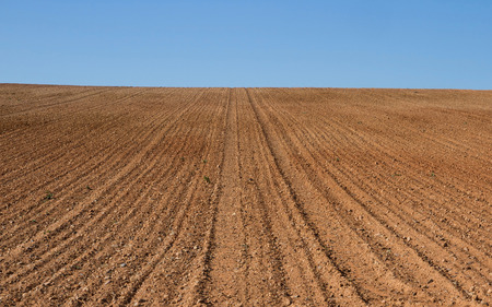 knoll: Knoll freshly plowed farmland and prepared for cultivation Stock Photo