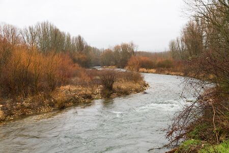 river banks: River surrounded by greenery and trees a cloudy winter day