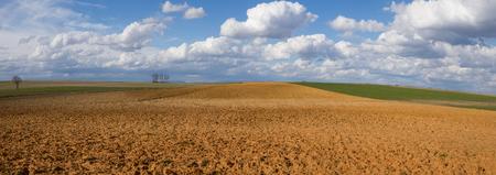 Landscape with fallow land recently plowed and cereal crops. A sunny day with cottony clouds - Paisaje con tierras en barbecho aradas recientemente  y cultivos de cereal. Un día soleado con nubes algodonosas terreno, agricultura,  tierra, campos, pano