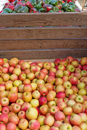 Apples bulk market, stuck in a wooden crate
