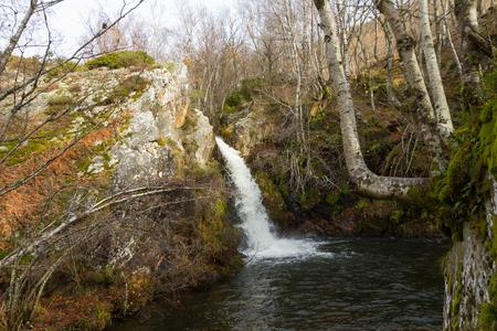 Natural Waterfall between Beech, Rocks and Moss
