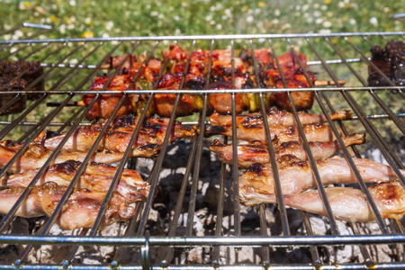 Skewers and pieces of meat being made on the outdoor grill