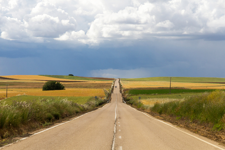 Long straight road with some vehicle, in wavy landscape, between fields cultivated in green and yellow tones, at the end of the spring