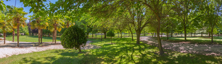 Panoramic city park in spring and summer, with paths between trees of different species and sun and shadow