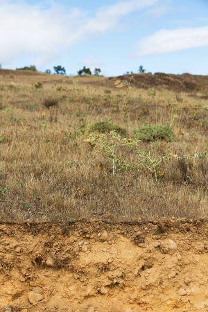 Cross Section of Clay Land in Summer Landscape Reklamní fotografie