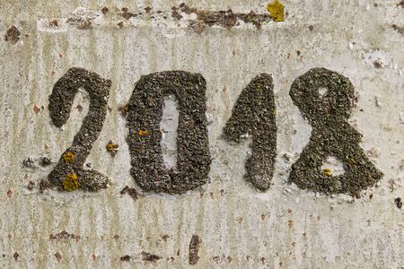 Date of the year 2018 engraved on the bark of a trunk of a tree Stock fotó
