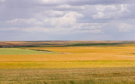 Landscape of multicolored fields with different crops Imagens
