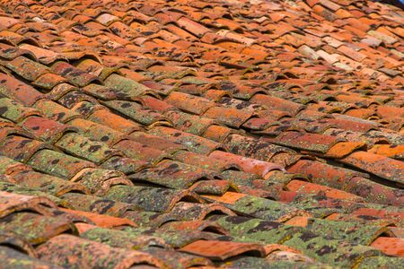 Detail of Old roof with reddish corrugated tile and with tiles sown with mosses and lichens