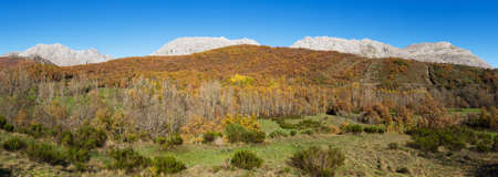 Panoramic view with mountain landscape of limestone rock after an autumn forest and green meadows