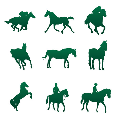 hippodrome: Horse vector