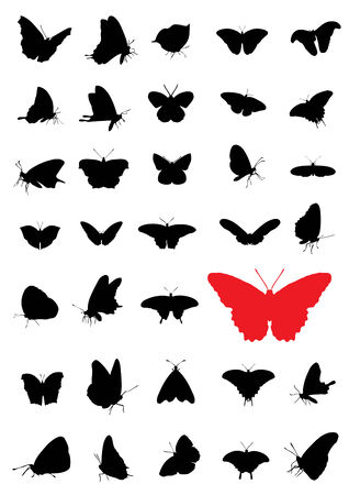 butterfly wings: Butterfly silhouettes Illustration