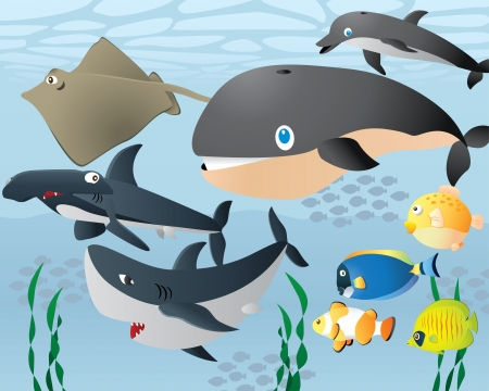 Lovely Cartoon Sea Life Background  Vector