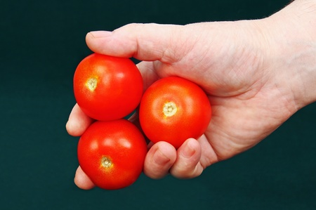 three ripe red tomatoes in a male hand, green background. photo