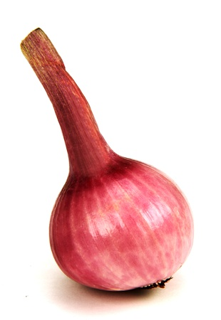 young onions with a circumcised pen, photo on the white background.