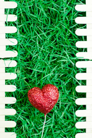 ramantic: Red heart on green grass background and fence for Valentines Day