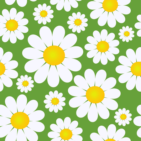 Seamless pattern with camomile flowers