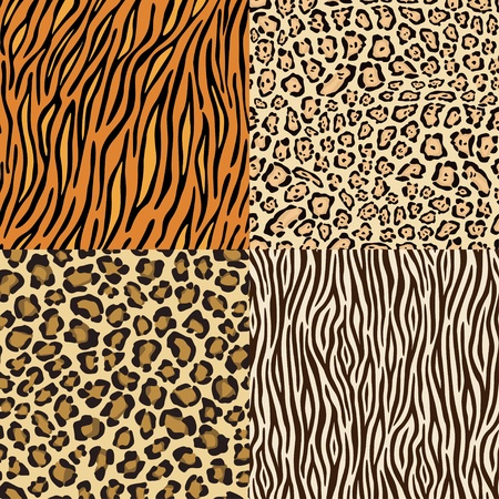 Set of leopard, gepard. tiger and zebra skins. Vector