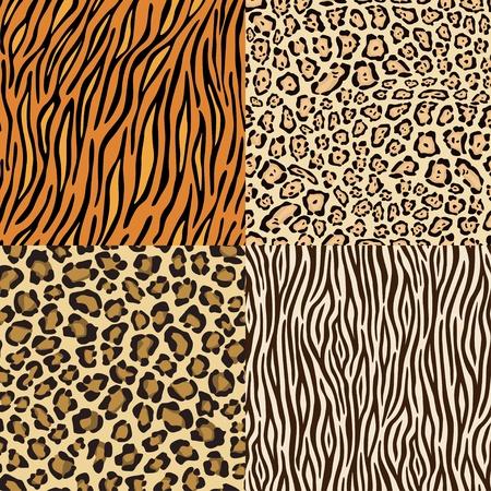 Set van leopard, gepard. Tiger en zebra skins. Vector Illustratie
