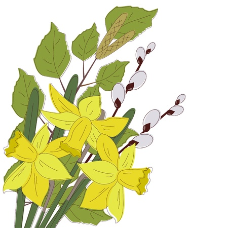 daffodil: Flowers Easter Background