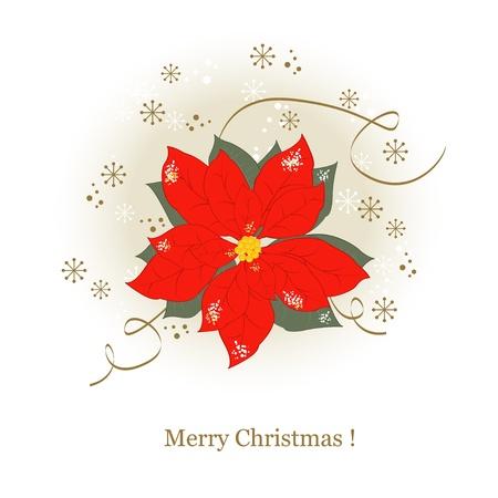 Christmas greeting card with Christmas flowers Vector