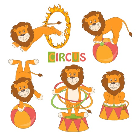 Collection of cute circus lion on white background  Vector illustration Vector