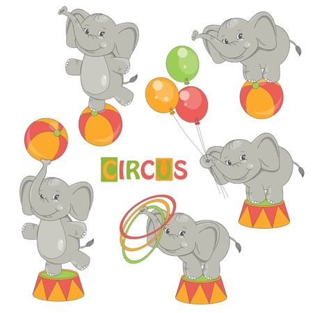 Collection of cute circus elephant on white background   Vector