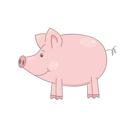 illustration of cute little pig on white background. Vector