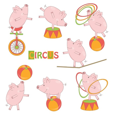 rope walker: Collection of cute circus little pig on white background  Vector illustration Illustration