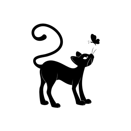 butterfly tail: Black cat silhouette. Hand drawing illustration isolated on white background. Illustration