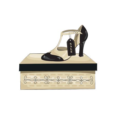 ladies shoes: Elegant womens shoes on the box. Vector illustration, isolated on white background. Illustration