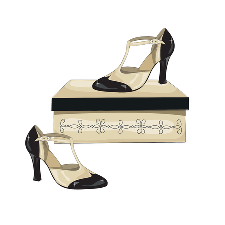 milonga: Elegant womens shoes on the box. Argentine tango dance shoes. Vector illustration, isolated on white background.