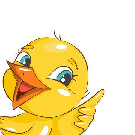 pajaro caricatura: pollo pequeño y lindo. Vector aislado en el fondo blanco. Vectores