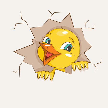 mirthful: Cute little chicken hatched from egg. Vector illustration