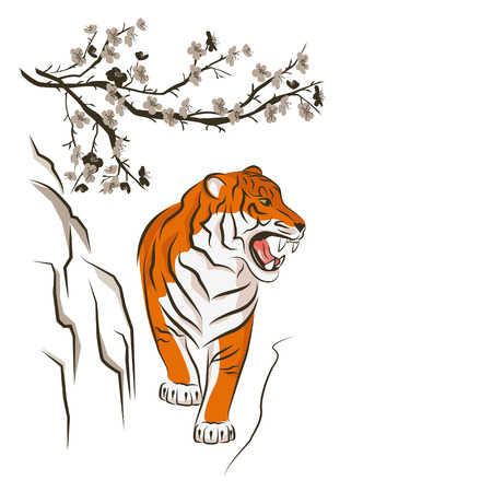 Angry tiger and Chinese plum tree. Traditional Japanese ink painting sumi-e. Vector isolated on white. Illustration