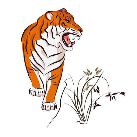Angry tiger and wild orchid. Traditional Japanese ink painting sumi-e on white background. Isolated.