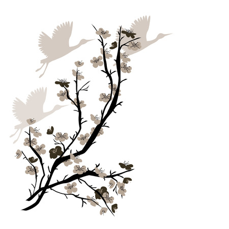 white flowers: Hand drawn illustration with Chinese Plum tree and crane birds. Vector isolated on white.