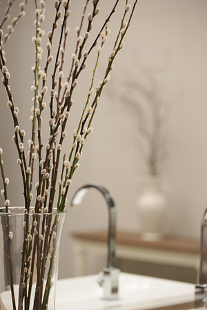 Some Pussy Willow In Vase Put In A Bathroom Stock Photo Picture And