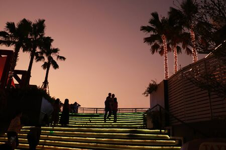 the stair and palm trees are decorated by light for matching with twilight sky 스톡 콘텐츠