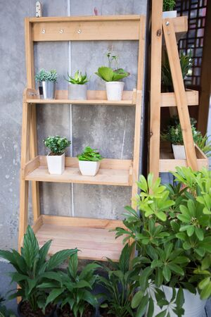 two wooden garden shelfs and some plants put on a raw concrete corner wall on street