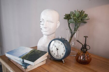 alarm clock, ceramic head sculpture, books, watering pot and plant in vase put together on sideboard top in bedroom
