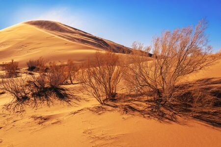 Singing barkhan is a mountain of sand of light tones, it has a length of up to 3 km and a height of 150 m.