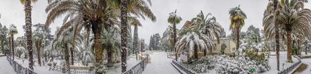 SOCHI, RUSSIA - JANUARY 29, 2017: Winter panorama of the Arboretum.