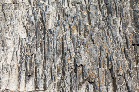 The texture of a stone abstract pattern in nature.