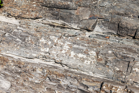 Photo shows a stone texture. The texture of the stone. Stock Photo