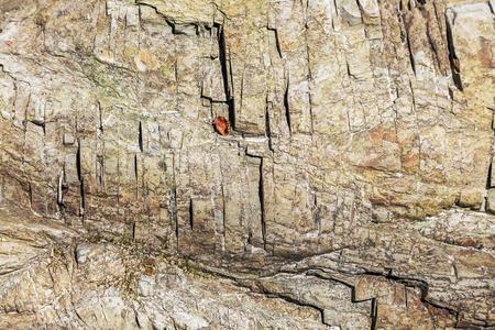 Geometric pattern on a steep mountain rock.