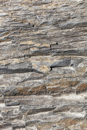A relief ornamental texture on a cliff face.