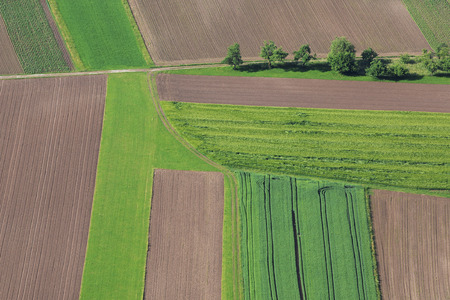 the arable land: Cultivated field from above. Aerial view of meadows and cultivated fields. Birds view. Arable land.