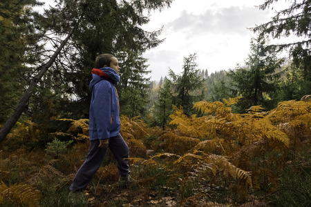 Active lifestyle contributes to well-being. Curious child wander through the woods taking care of his body and mind. Fresh air helps our lungs stay healthy.