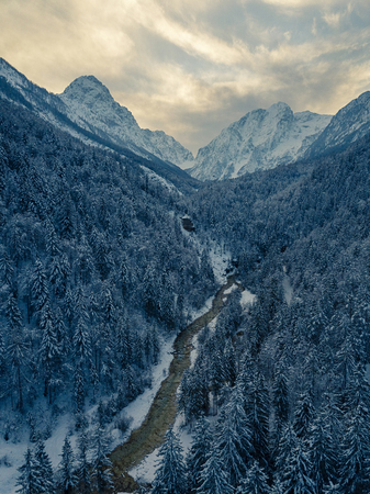 Aerial photo of glacier valley. Winter background with snow covered trees.